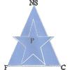 New Star (Cmr)